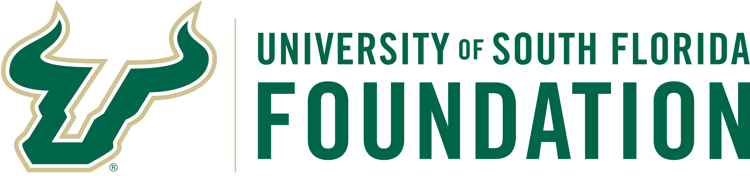 USF Foundation